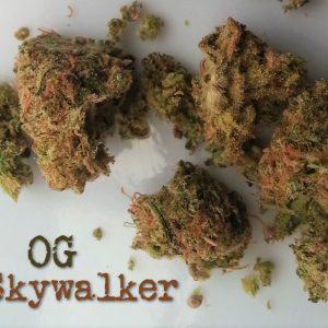skywalker strain